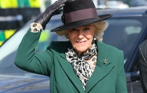 Duchess of Cornwall joins all-star reading of Roald Dahl classic