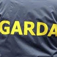 Four men questioned after gardaí seize guns and ammunition in Co Offaly