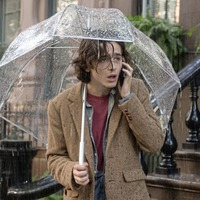 Woody Allen's latest A Rainy Day in New York a minor drizzle rather than a gale force classic