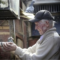 Master pigeon racer Micky Kelly shares his wisdom as he bows out of beloved sport