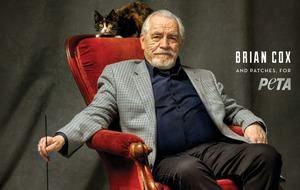 Succession star Brian Cox quizzed by rescue cat in Peta advert