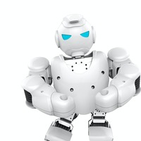 'Long way to go' before robots replicate human thought, says expert