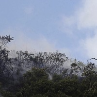 Fire Service fights 114 gorse and wildfires in 48 hours