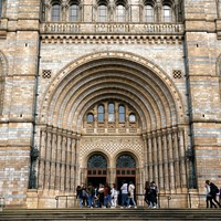Natural History Museum appoints Amazon UK boss as director