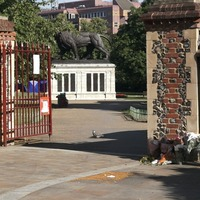 Forbury Gardens lion image goes viral as residents show unity after attack