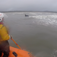 Runaway horse rescued from Atlantic in Ireland