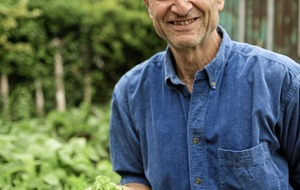 Gardening: Can you sow veg seeds in summer? If you choose carefully...