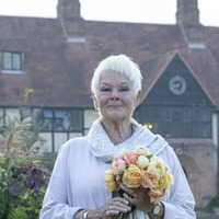 Dame Judi Dench: Arts funding is welcome but will be spread thin