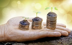 How you can speed up the growth of your pension tree
