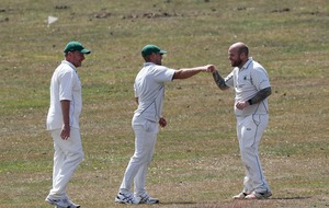 Cricket is back: Fist bumps in place of handshakes as gentleman's game returns