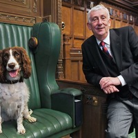 'Brave' police dog given Speaker's chair during House of Commons sweep