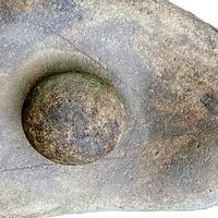 Lockdown sparks archaeological finds in back gardens