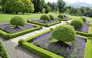 Gardening: My pick of 10 of the top gardens in Britain and Northern Ireland to visit