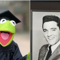 Elvis and Kermit among public suggestions for new Mississippi state flag