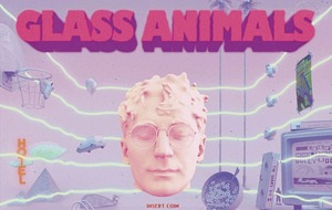 Albums: New music from Glass Animals, Psychedelic Furs, Washed Out and Layla Kaylif