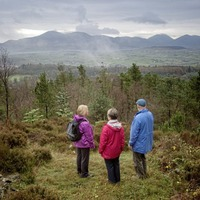 Take on Nature: A walk out of modern Ireland and into our ancient past