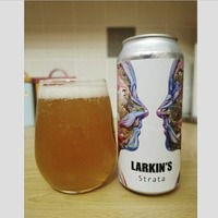 Craft Beer: Larkin's go solo with single-hop Strata that's perfect for a summer's day