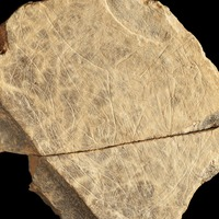 Scientists discover stone fragments showing 'earliest art in the British Isles'