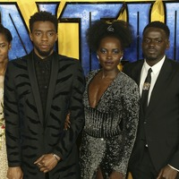 Radical Black Panther a landmark in fight for representation across Hollywood