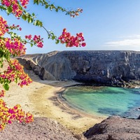 Travel: Is it worth taking a punt on winter sun bargains in the Canary Islands?