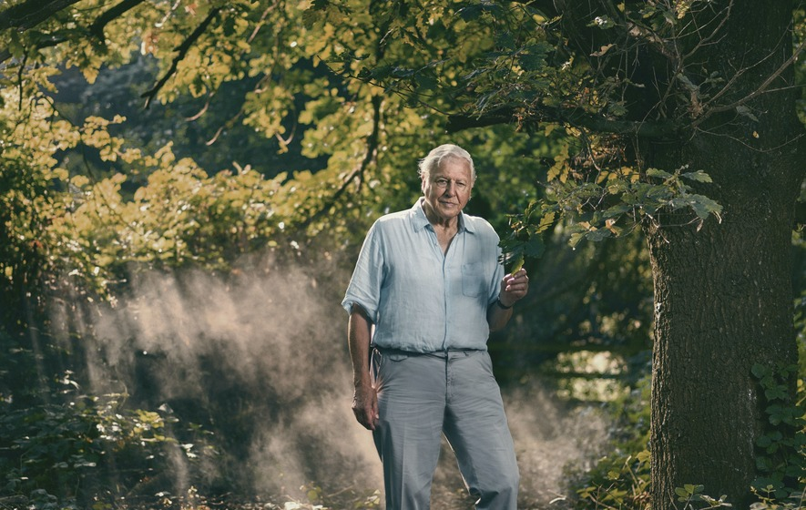 Sir David Attenborough's Extinction: The Facts to air on BBC One this month - The Irish News