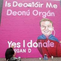 Mural of toddler Dáithí Mac Gabhann unveiled in west Belfast for Organ Donation Week