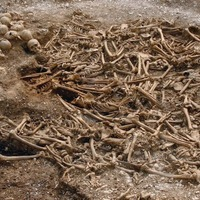 Analysis of viking skeletons suggests they were not all Scandinavian