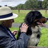 President Michael D Higgins mourns death of his Burmese mountain dog Síoda