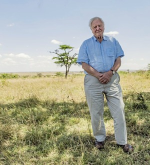 Stark warning from Sir David Attenborough: 'Humanity is at a crossroads'