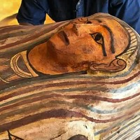 Dozens of coffins decorated with hieroglyphics found in Egyptian necropolis