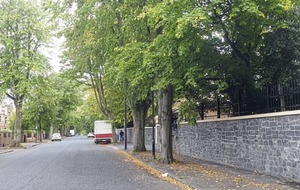 Tree to be felled due to damage from Belfast's Chinese Consulate wall