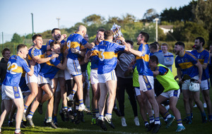 Portaferry end their six-year wait for Down SHC title against gutsy Ballycran