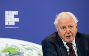 Sir David Attenborough: I refuse to cry in the corner over the planet