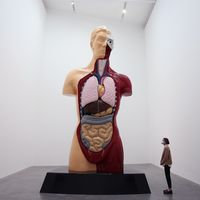 Damien Hirst exhibition featuring early works goes on display in London