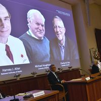 Three win Nobel medicine award for Hepatitis C virus discovery