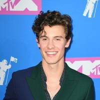 Greg James shares Shawn Mendes' apology for missing an interview