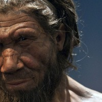 Climate change may have driven early human species to extinction – study