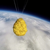 Sleb Safari: We're sending chicken nuggets into space now