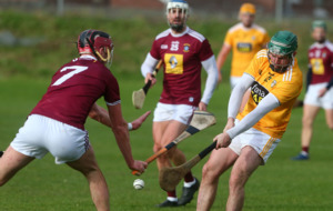 Antrim hurlers aiming to add McDonagh Cup success to League promotion - McCloskey