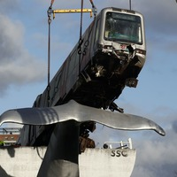 Cranes lift runaway train off whale sculpture in Rotterdam