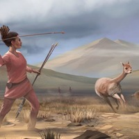 9,000-year-old remains of female teenager 'challenges man-the-hunter hypothesis'