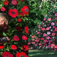 'Team effort': Surrey care home's handmade poppy cascade marks Remembrance Day