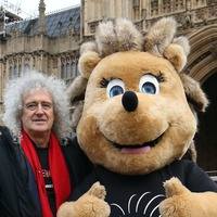 Hedgehog homes saved from bulldozers after Brian May campaign
