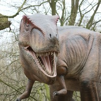 Dinosaurs were not in decline when asteroid hit, study suggests