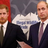 Duke of Sussex sees probe into Diana interview as 'drive for truth'