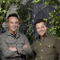 I'm A Celebrity pulls in viewers to score ratings success