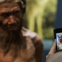 Neanderthal thumbs better adapted to holding tools with handles, study finds