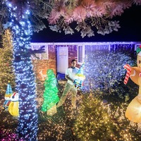 In Video: Sparkling Christmas lights display brings early festive cheer