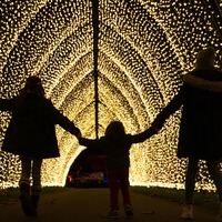 In Pictures: Spectacular light show brings festive cheer to Kew
