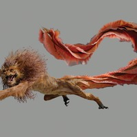 Exhibition inspired by JK Rowling's creatures opens its doors